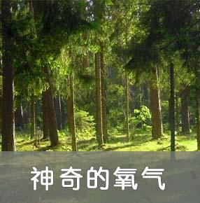 人类赖以生存的空气(一)